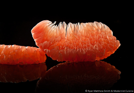 behind the scenes with modernist cuisine's food photographer part