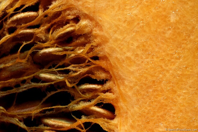 butternut squash macro